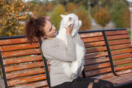 young lady with Maine Coon cat seats on the bench Stock Photo