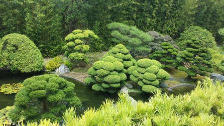 japanese tea garden: Japanese tea garden, San Francisco