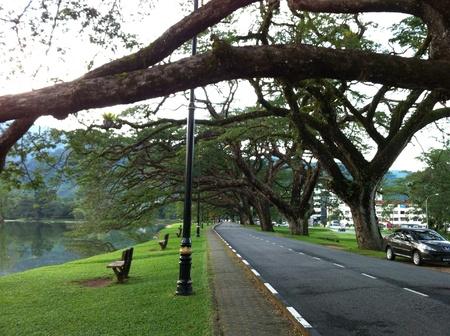 bukit: Taiping Lake Garden