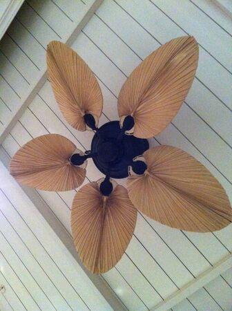 ceiling fan: Authentic ceiling fan Stock Photo