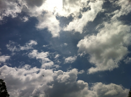 ���clear sky���: Clouds clear sky Stock Photo