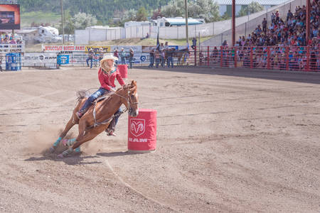 Williams Lake, British ColumbiaCanada - July 2, 2016: horse and rider cut around the second barrel during the barrel racing competition at the 90th Williams Lake Stampede
