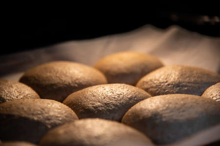 Close-up of pan of whole wheat vegan buns rising in oven before baking