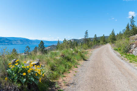 View of Kettle Valley Rail Trail, Okanagan Lake, and blooming wildflowers with blue sky 版權商用圖片