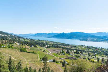 Panoramic view of Narmata Bench vineyards, Okanagan Lake and Okanagan Valley in springtime 版權商用圖片