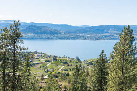 View of pine forest, vineyards, mountains, and Okanagan Lake from the Kettle Valley Rail Trail