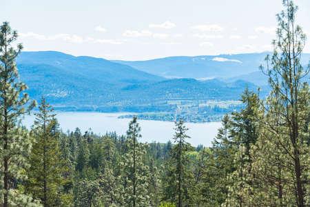 Ponderosa pine forest with view of Okanagan Lake, Okanagan Valley, and mountains