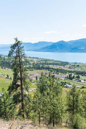 View of Okanagan Valley, village of Naramata, Okanagan Lake, and mountains with blue sky 版權商用圖片