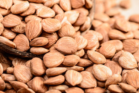 apricot kernels: apricot kernels on the wooden board