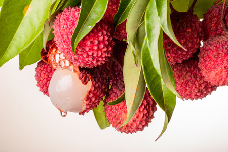 fresh lychee and leaves on the white background Foto de archivo
