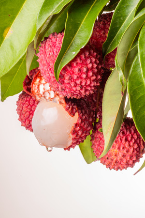 leechee: fresh lychee and leaves on the white background Stock Photo