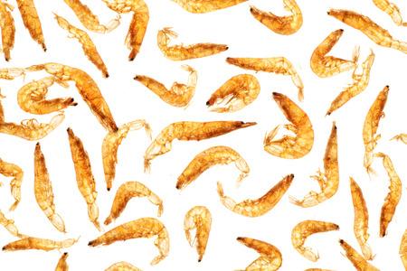 backlighting: dried small shrimps,backlighting