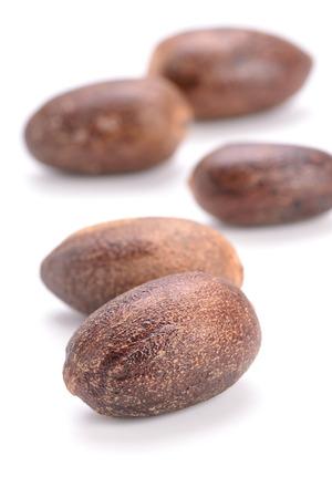 nutmeg: nutmeg on the white background