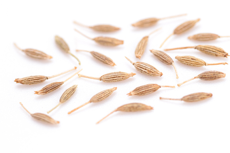 cumin: cumin seeds on the white background