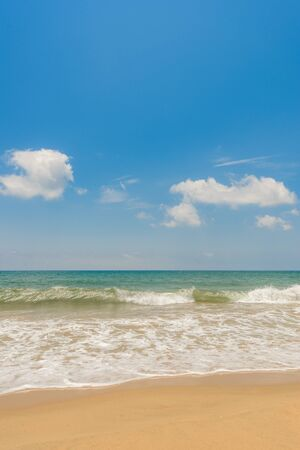 beach in the sun photo