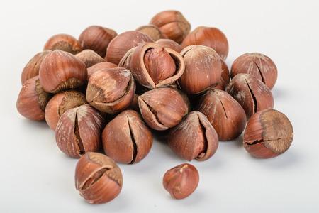 dried hazelnut on the white background photo