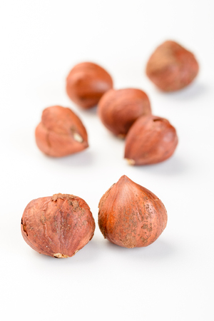 cobnut: dried hazelnut on the white background