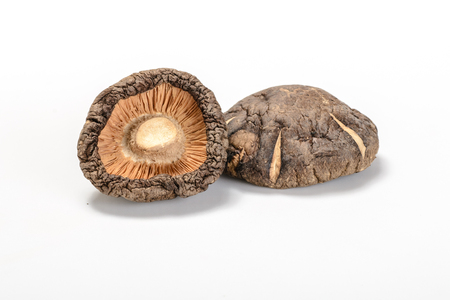 shitake: dried shitake mushroom on the white background Stock Photo