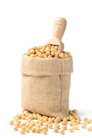 soybean Stok Fotoğraf - 39550734