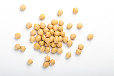 frijoles: soja Foto de archivo