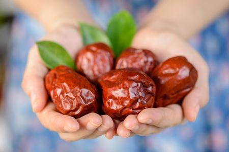 dried date fruit, dry jujube fruit Stok Fotoğraf