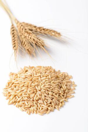 oats on the white background Stok Fotoğraf