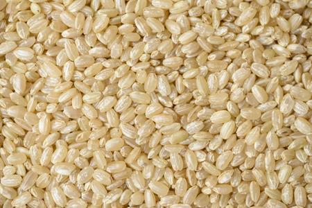 Brown rice Archivio Fotografico