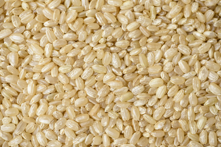 Brown rice Banque d'images
