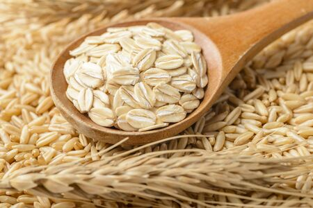 oatmeal and oat, close up photo