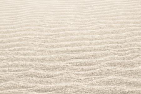 모래 질감
