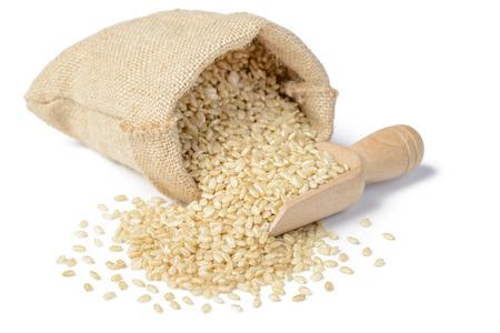 brown rice  写真素材