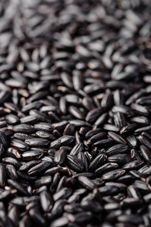 food background of black rice