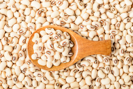 cow pea: uncooked white cow pea beans in wooden spoon Stock Photo