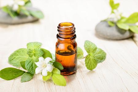 fresh mint essential oil on wooden board