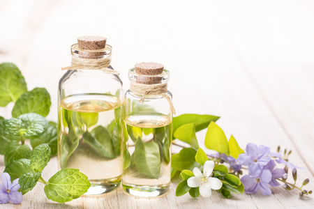 herbs white background: fresh mint essential oil and flowers