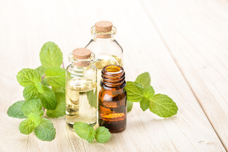 fresh mint essential oil on wooden board Banco de Imagens - 52433268