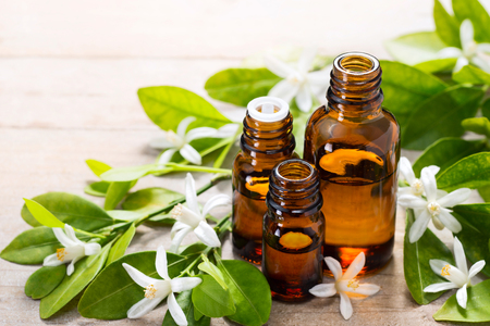 neroli essential oil in the brown glass bottle, with fresh white neroli flower and green leaves. Standard-Bild