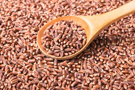 secale: food background of raw rye, top view Stock Photo