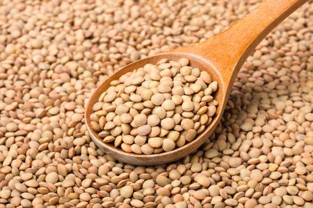 raw lentils on white, (large depth of field, taken with tilt shift lens)