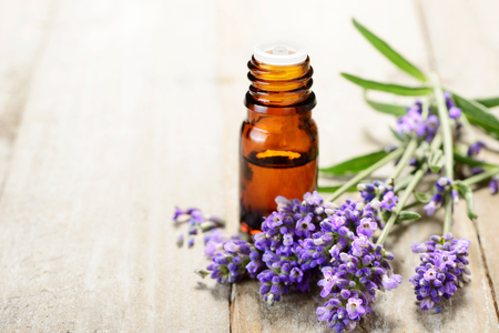 Lavender essential oil in the amber bottle, with fresh lavender flower heads. Stockfoto