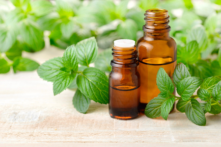 fresh peppermint leaves and Peppermint essential oil in the amber glass bottle Stockfoto