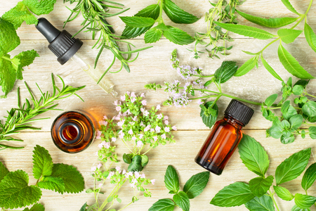 fresh herbs, leaves, flowers and massage oils on the wooden board