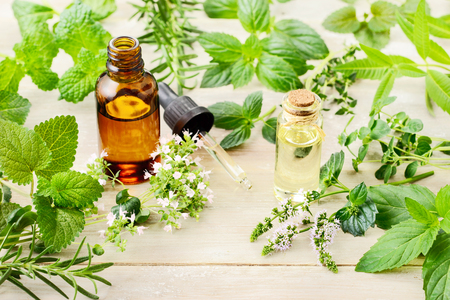 fresh herbs, leaves, flowers and essential oil on the wooden board Banque d'images