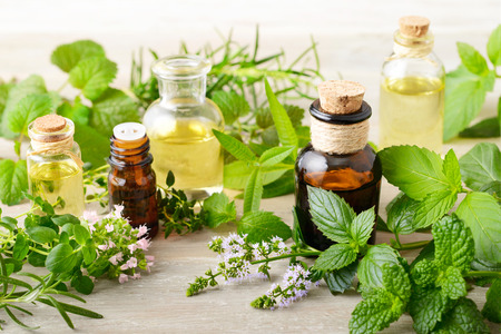 fresh herbs and massage oils on the wooden board