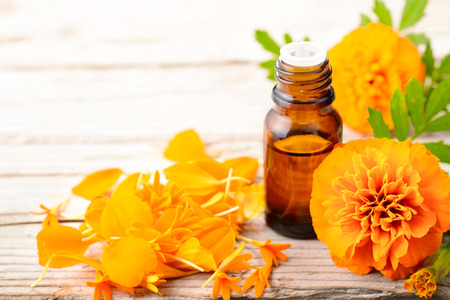 Tagetes essential oil and flowers on the wooden board 스톡 콘텐츠