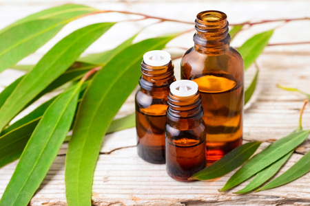 Eucalyptus essential oil in the amber bottle