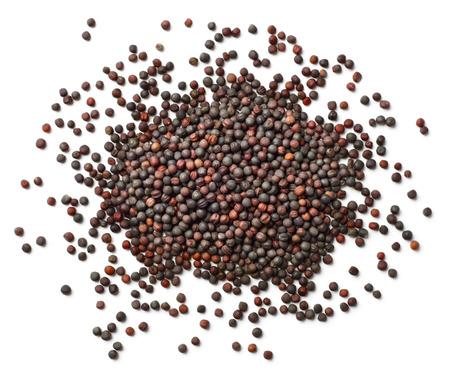 semi di colza secchi isolati sulla vista bianca e superiore