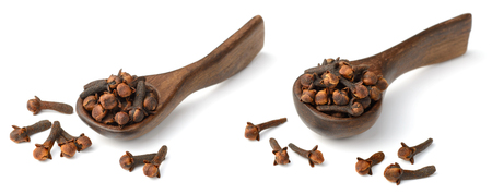 dried herb, dried cloves in the wooden spoon, isolated on white
