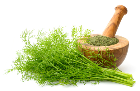 dried dill weed in the wooden mortar, with fresh dill weed isolated on white