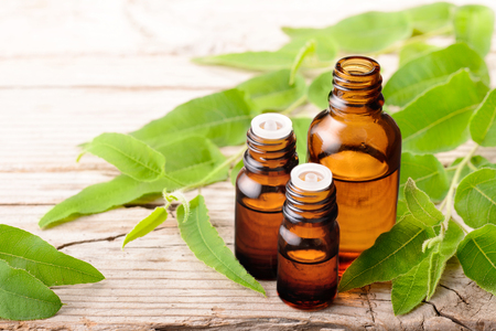 eucalyptus essential oil in the glass bottle, on the wooden board